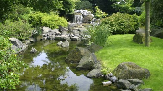 Types-Of-Gardening.jpg